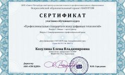Сертификат Козулина Елена Владимировна - Серия 041911 № 180274