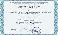 Сертификат Козулина Елена Владимировна - Серия 041912 № 180274