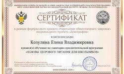 Сертификат Козулина Елена Владимировна