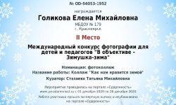 license (11)