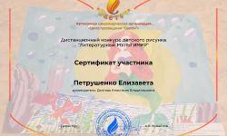 Петрушенко Елизавета_8030.jpg декабрь 2020