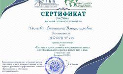 сертификат вебинар