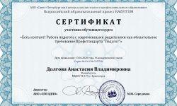 Сертификат Долгова Анастасия Владимировна - Серия 041912 № 215720